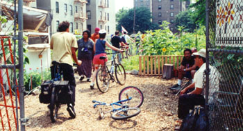 A garden tour in the South Bronx.
