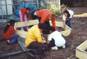 Installing garden beds at Greene Acres Community Garden in Brooklyn