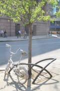 Bike Rack/Tree Guard: X-style at Astor Place. Photo by Jym Dyer.